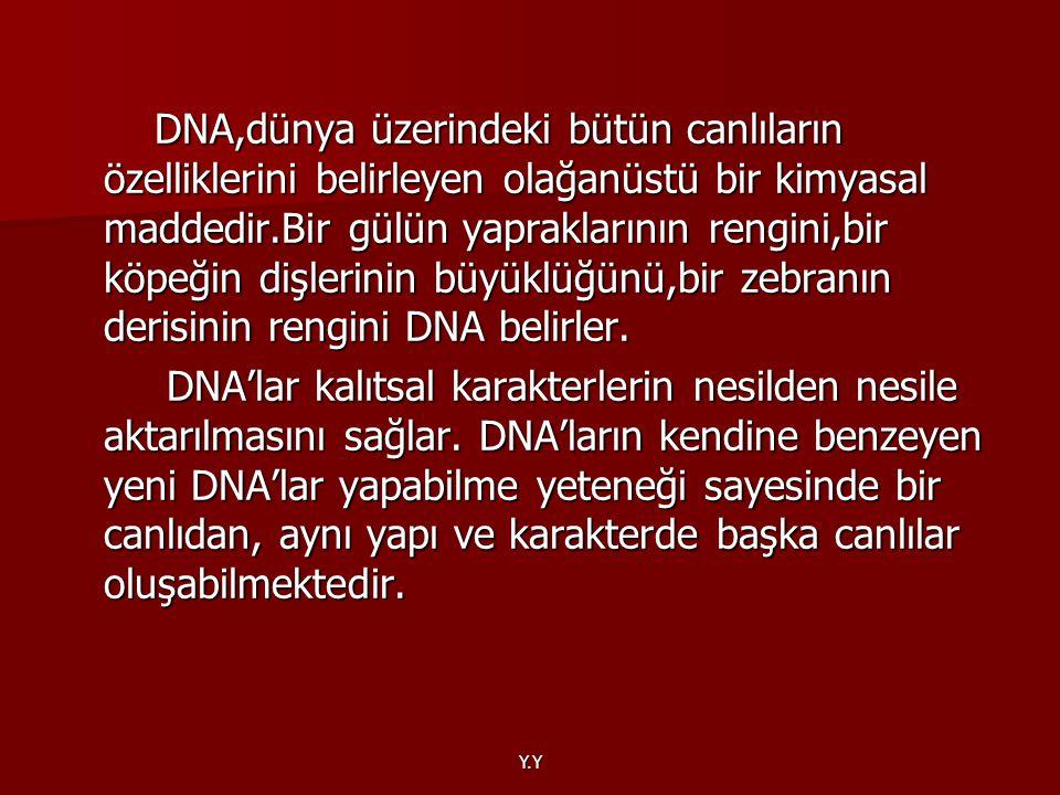 DNA,dünya üzerindeki bütün canlıların özelliklerini belirleyen olağanüstü bir kimyasal maddedir.Bir gülün yapraklarının rengini,bir köpeğin dişlerinin büyüklüğünü,bir zebranın derisinin rengini DNA belirler.