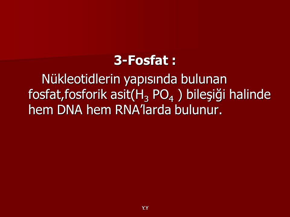 3-Fosfat : Nükleotidlerin yapısında bulunan fosfat,fosforik asit(H3 PO4 ) bileşiği halinde hem DNA hem RNA'larda bulunur.