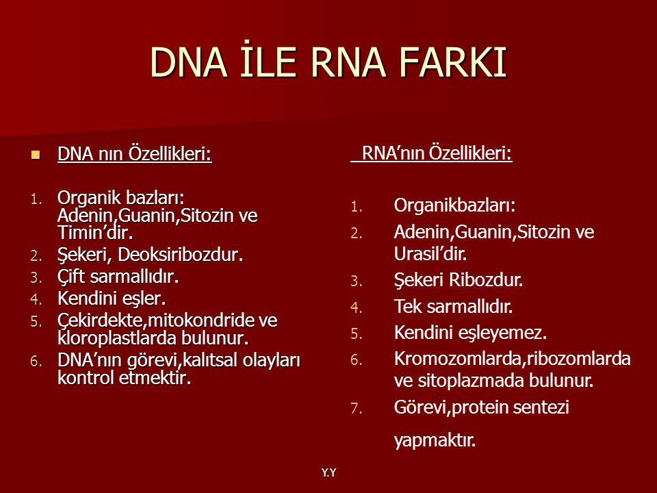 DNA İLE RNA FARKI RNA'nın Özellikleri: DNA nın Özellikleri: