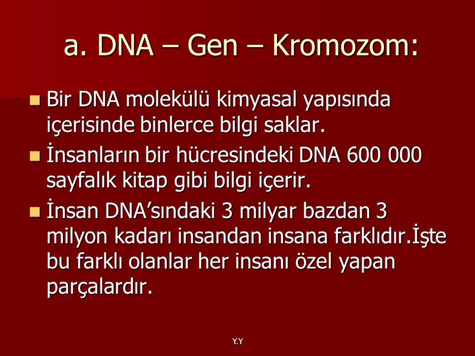 a. DNA – Gen – Kromozom: Bir DNA molekülü kimyasal yapısında içerisinde binlerce bilgi saklar.