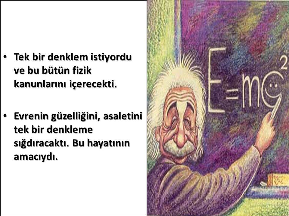 Tek bir denklem istiyordu ve bu bütün fizik kanunlarını içerecekti.