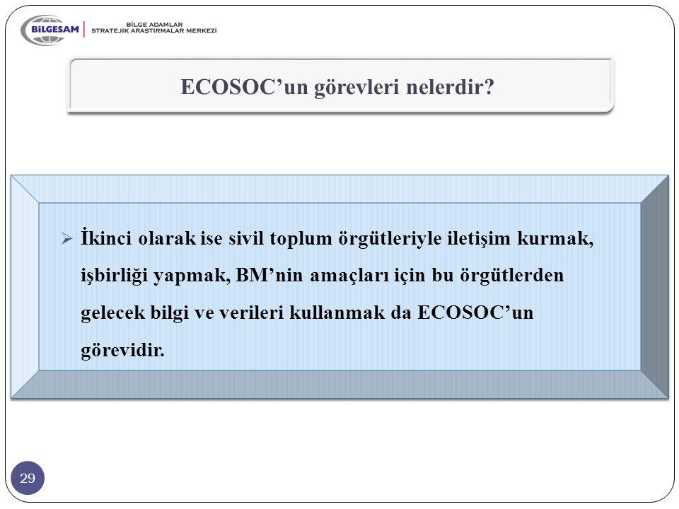 ECOSOC'un görevleri nelerdir