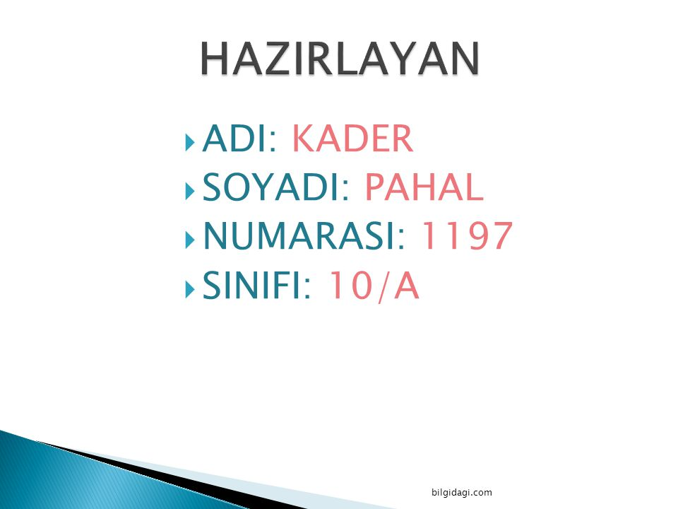 HAZIRLAYAN ADI: KADER SOYADI: PAHAL NUMARASI: 1197 SINIFI: 10/A