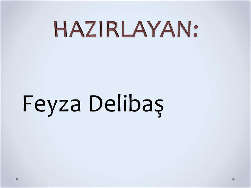 HAZIRLAYAN: Feyza Delibaş