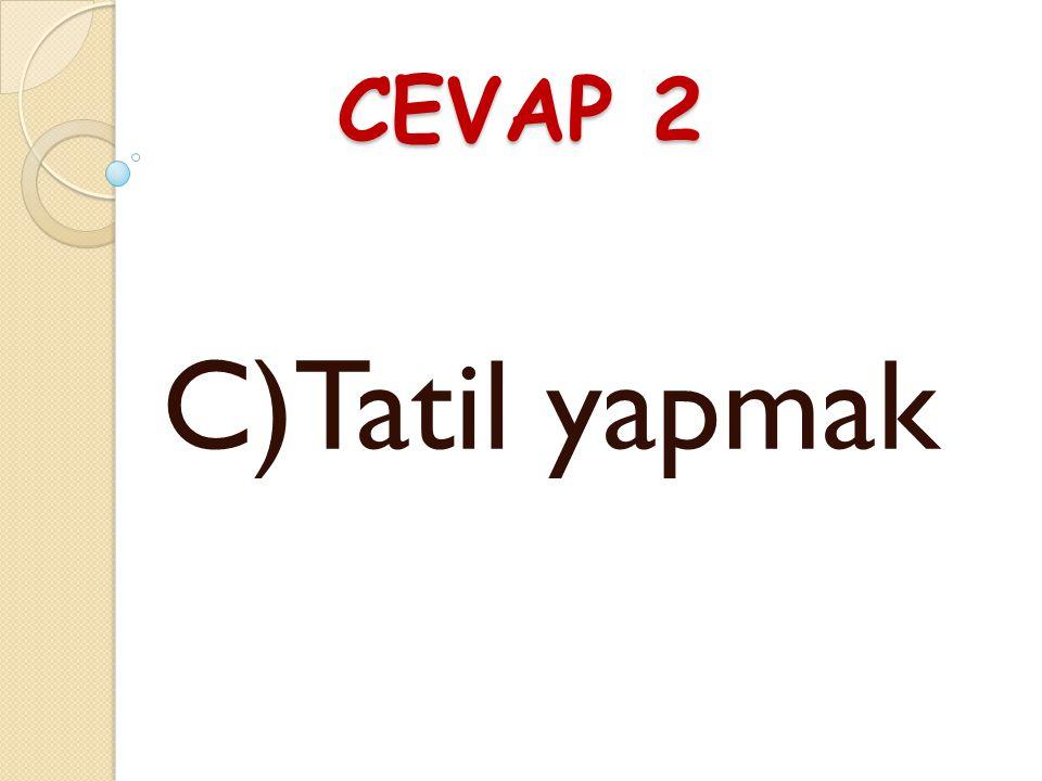 CEVAP 2 C)Tatil yapmak