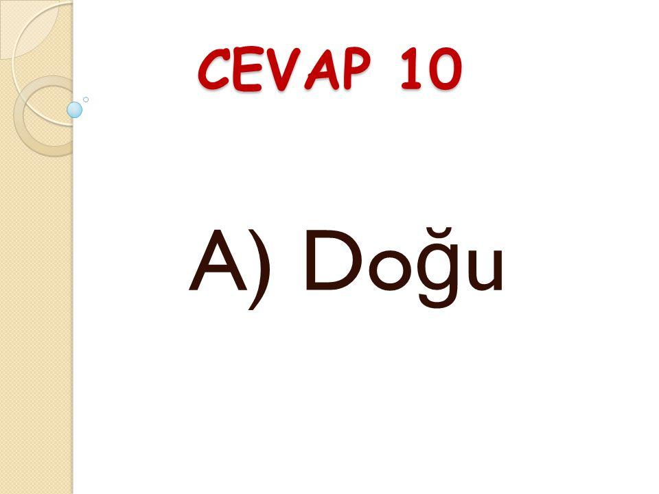 CEVAP 10 A) Doğu