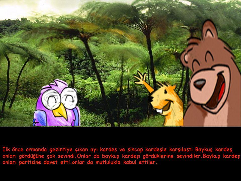 İlk önce ormanda gezintiye çıkan ayı kardeş ve sincap kardeşle karşılaştı.Baykuş kardeş onları gördüğüne çok sevindi.Onlar da baykuş kardeşi gördüklerine sevindiler.Baykuş kardeş onları partisine davet etti.onlar da mutlulukla kabul ettiler.