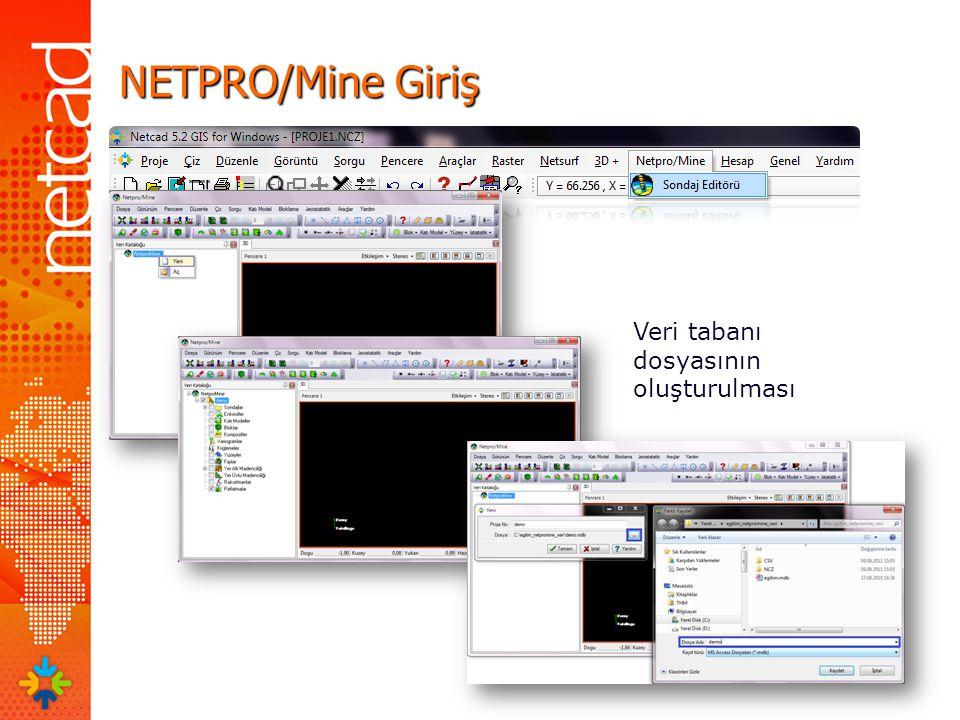NETPRO/Mine Giriş Veri tabanı dosyasının oluşturulması