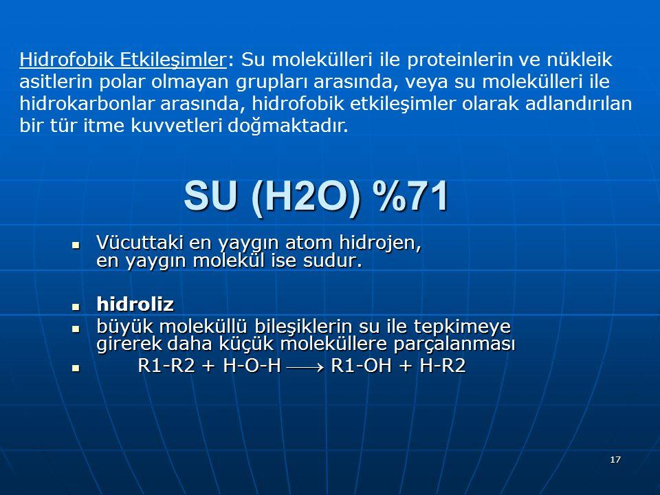 Hidrofobik Etkileşimler: Su molekülleri ile proteinlerin ve nükleik