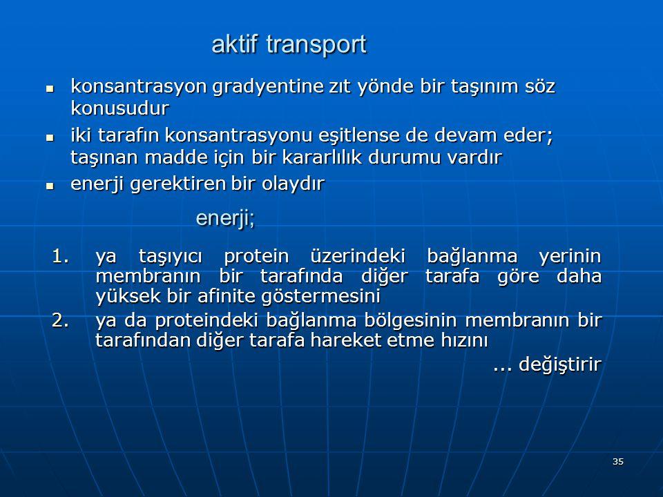 enerji; aktif transport