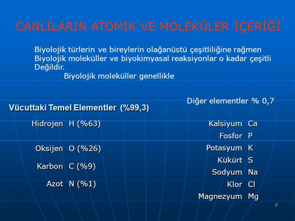 Vücuttaki Temel Elementler (%99,3)