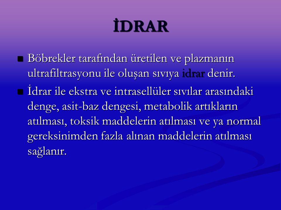 İDRAR Böbrekler tarafından üretilen ve plazmanın ultrafiltrasyonu ile oluşan sıvıya idrar denir.