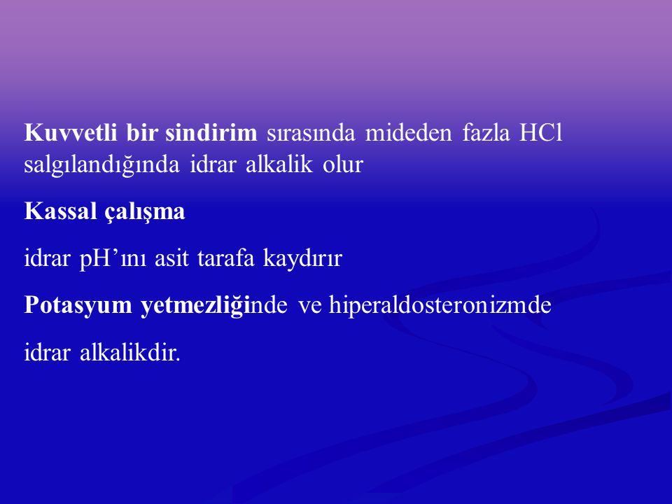 Kuvvetli bir sindirim sırasında mideden fazla HCl salgılandığında idrar alkalik olur