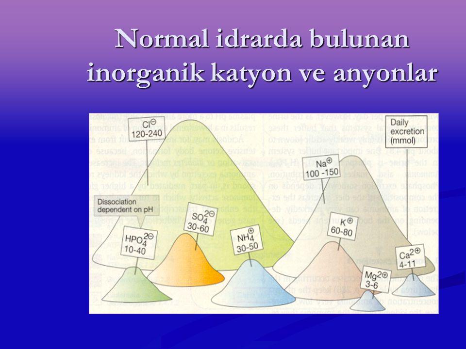 Normal idrarda bulunan inorganik katyon ve anyonlar