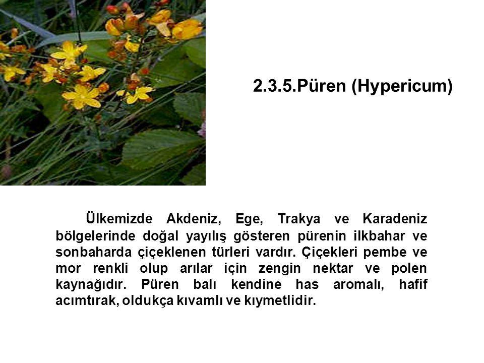 2.3.5.Püren (Hypericum)