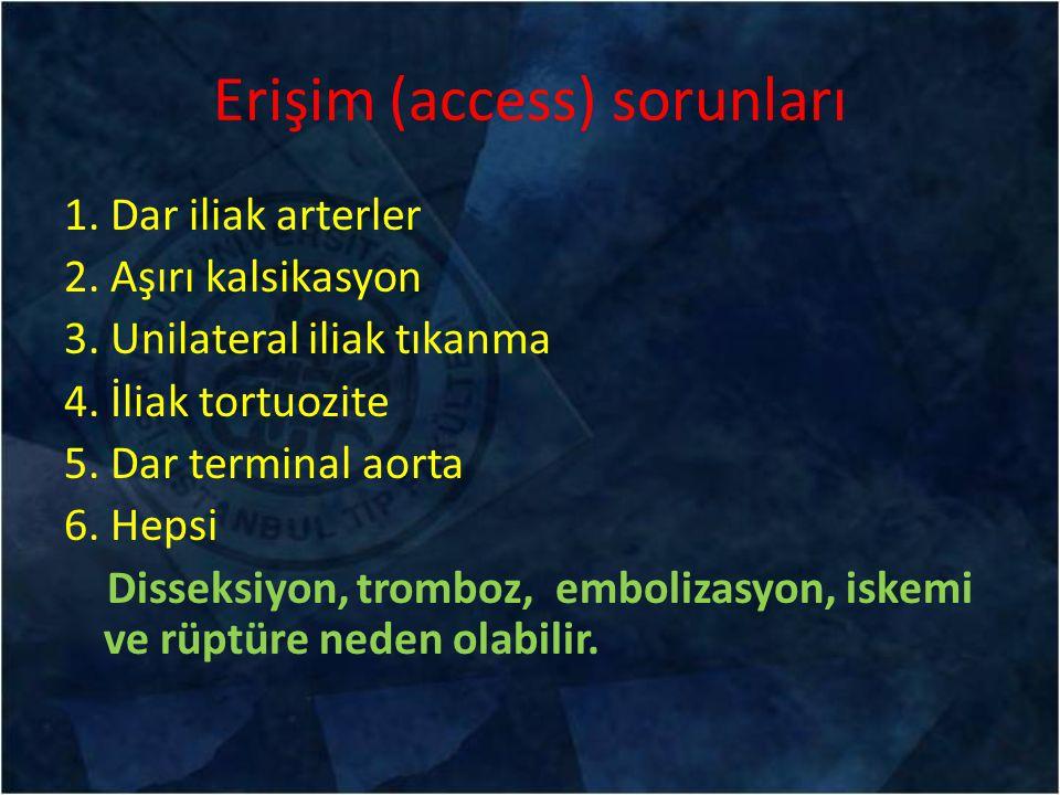 Erişim (access) sorunları