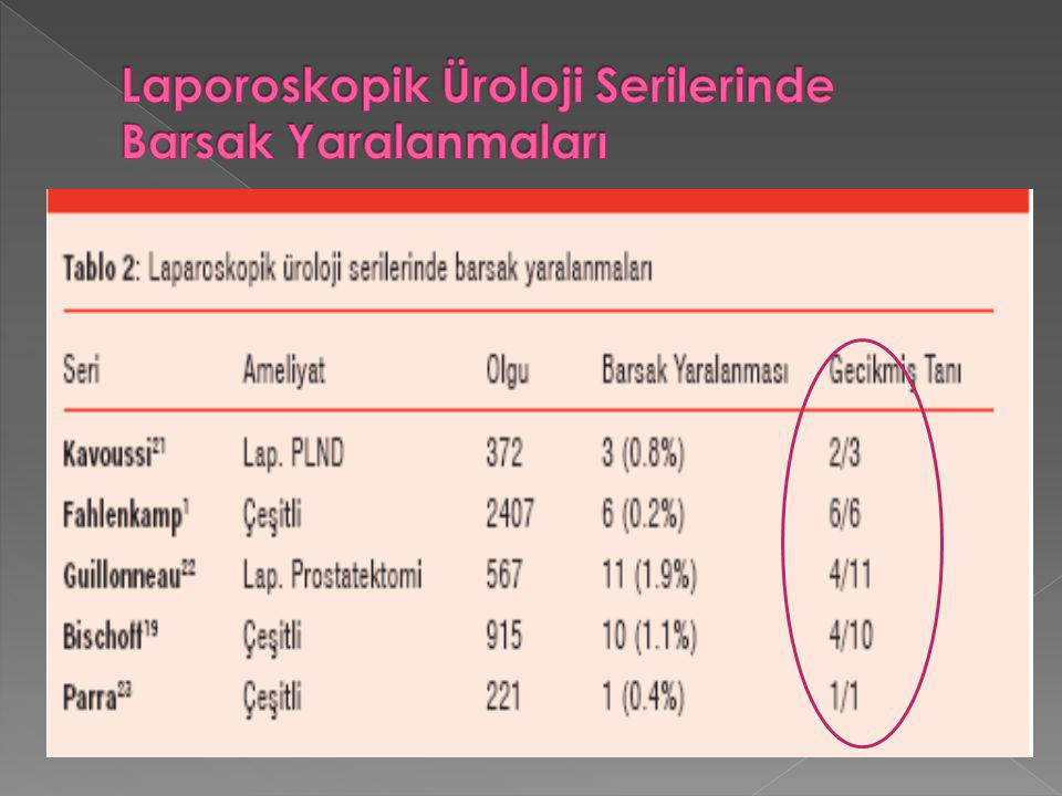 Laporoskopik Üroloji Serilerinde Barsak Yaralanmaları