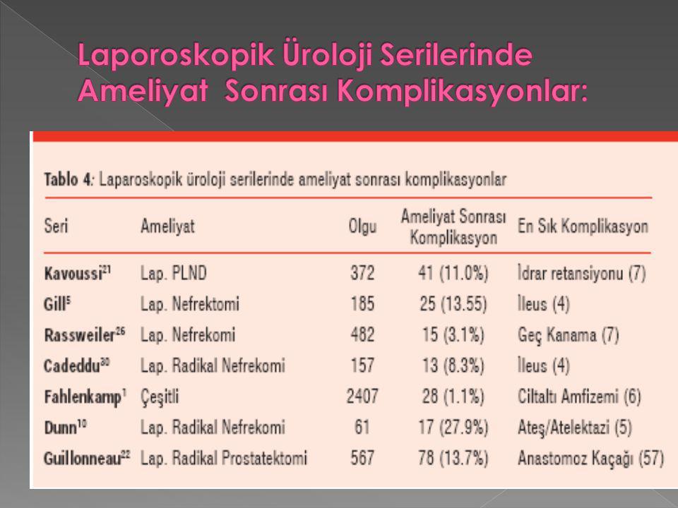 Laporoskopik Üroloji Serilerinde Ameliyat Sonrası Komplikasyonlar: