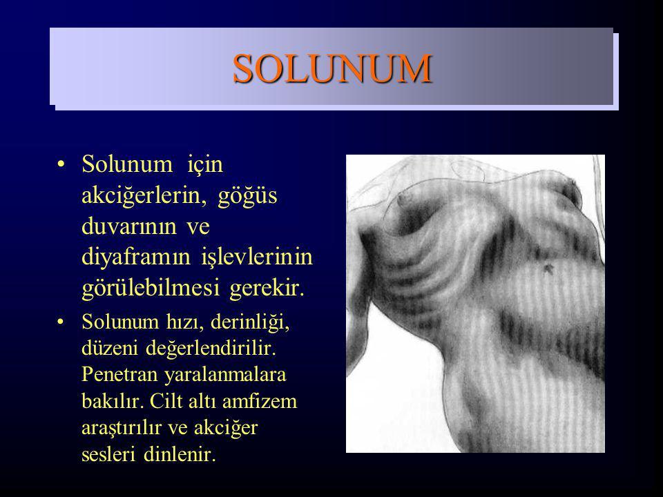 SOLUNUM Solunum için akciğerlerin, göğüs duvarının ve diyaframın işlevlerinin görülebilmesi gerekir.