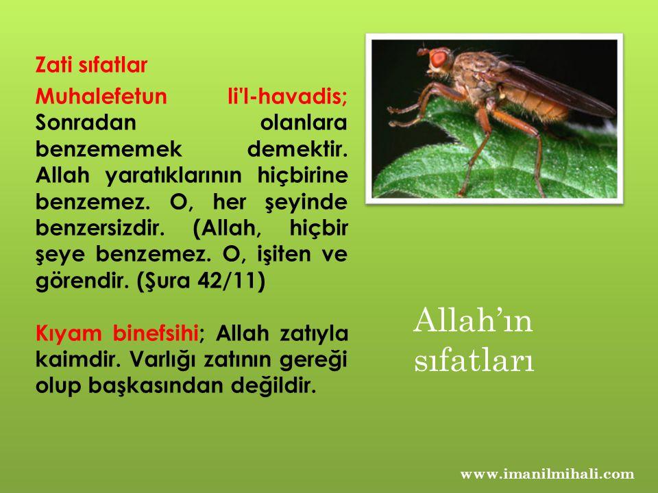 Allah'ın sıfatları Zati sıfatlar