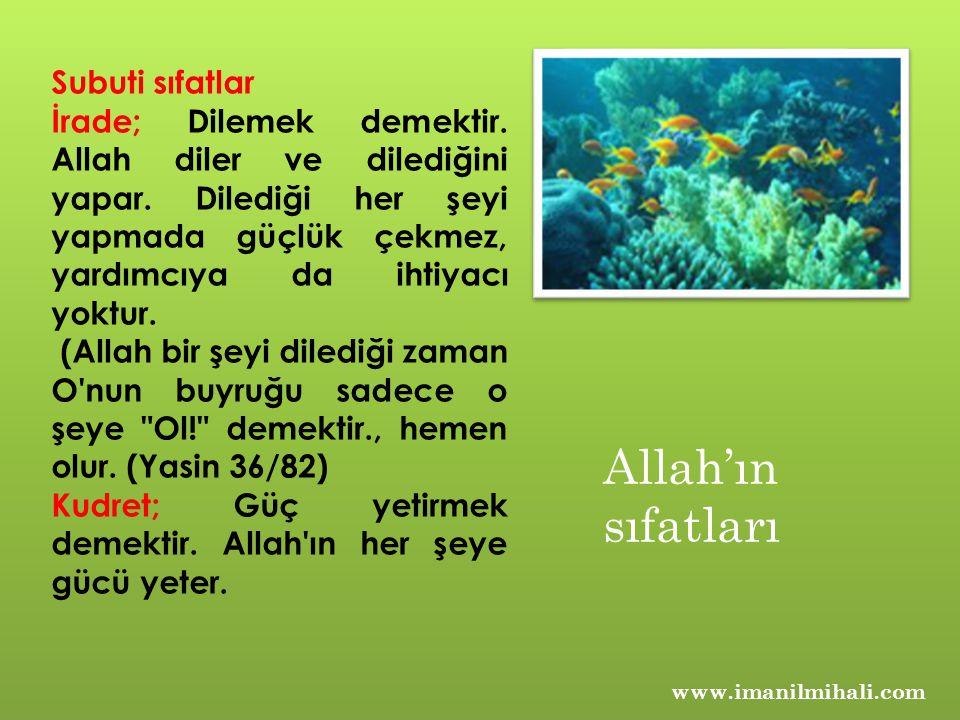 Allah'ın sıfatları Subuti sıfatlar