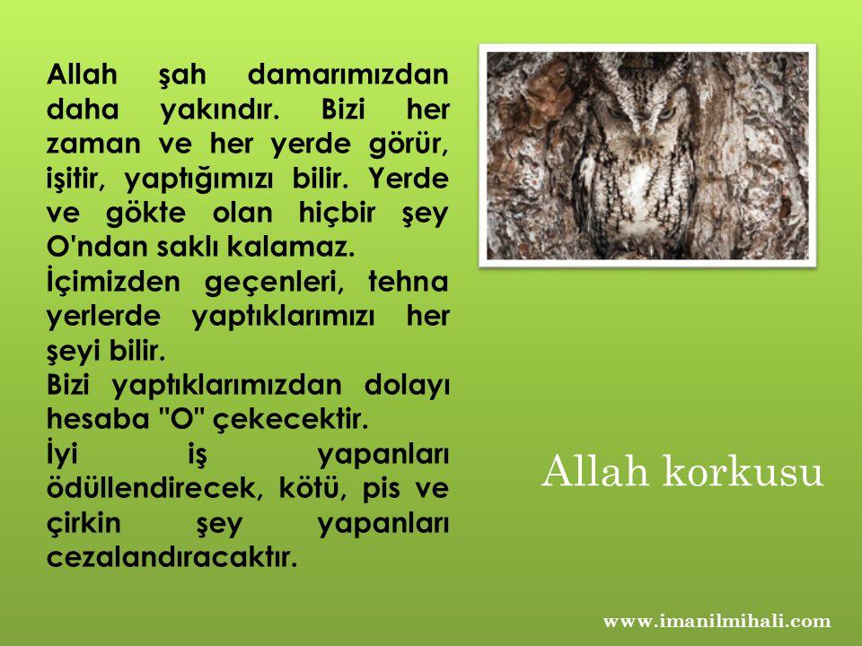Allah şah damarımızdan daha yakındır