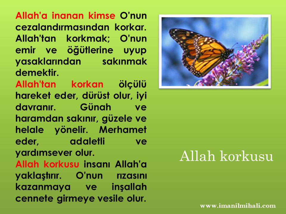 Allah a inanan kimse O nun cezalandırmasından korkar