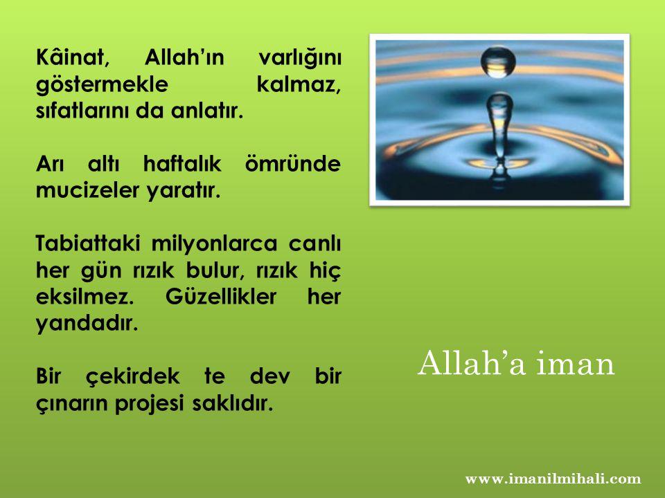 Kâinat, Allah'ın varlığını göstermekle kalmaz, sıfatlarını da anlatır.