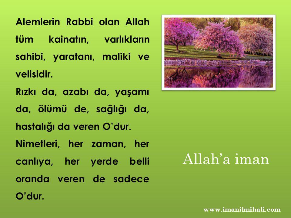 Alemlerin Rabbi olan Allah tüm kainatın, varlıkların sahibi, yaratanı, maliki ve velisidir.