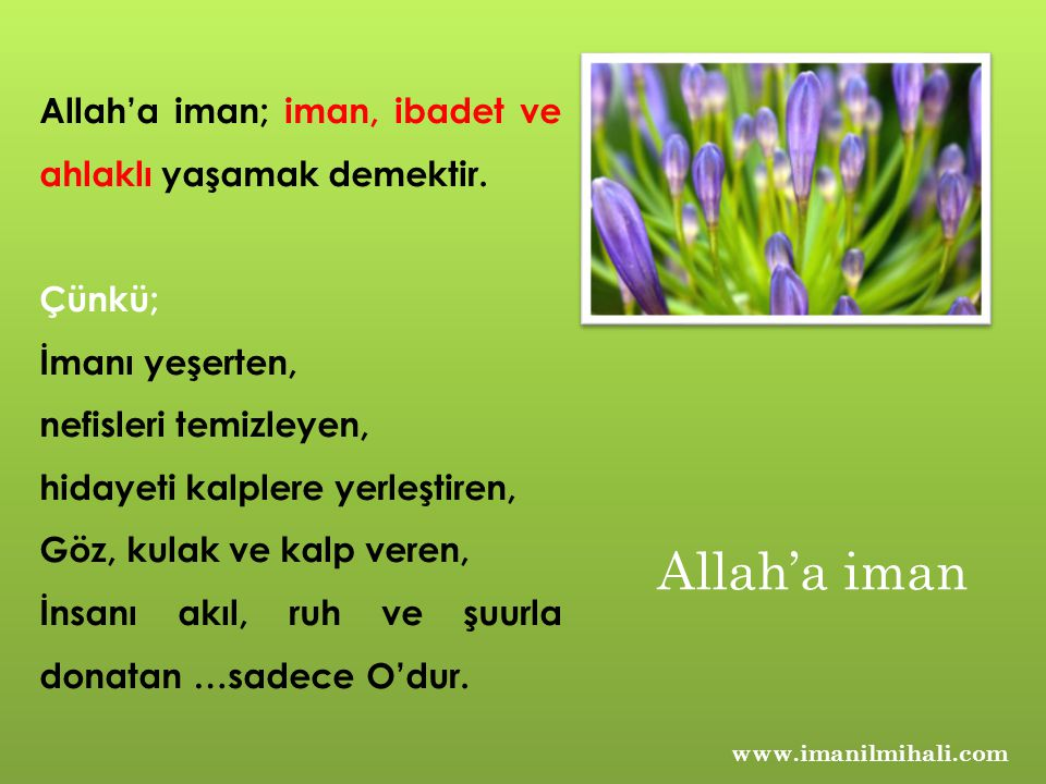 Allah'a iman Allah'a iman; iman, ibadet ve ahlaklı yaşamak demektir.