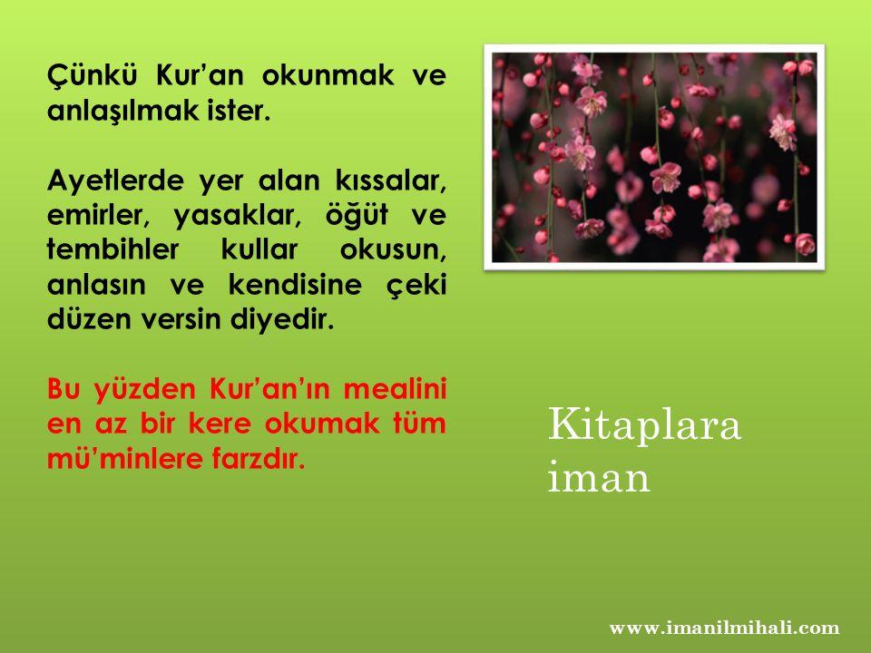 Kitaplara iman Çünkü Kur'an okunmak ve anlaşılmak ister.