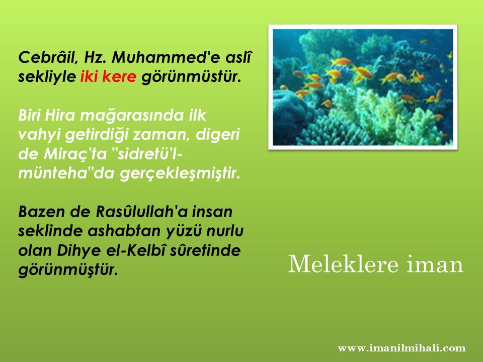 Cebrâil, Hz. Muhammed e aslî sekliyle iki kere görünmüstür.