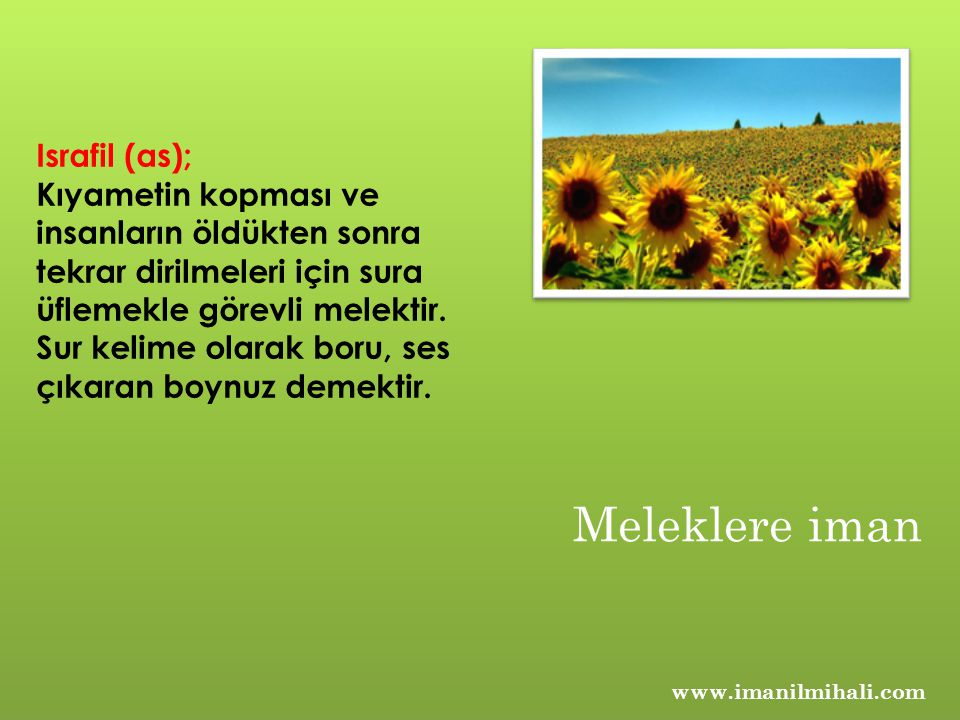 Meleklere iman Israfil (as);