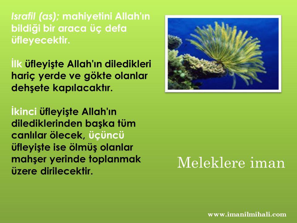 Israfil (as); mahiyetini Allah ın bildiği bir araca üç defa üfleyecektir.