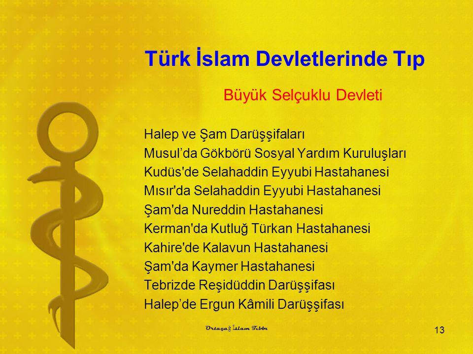 Türk İslam Devletlerinde Tıp