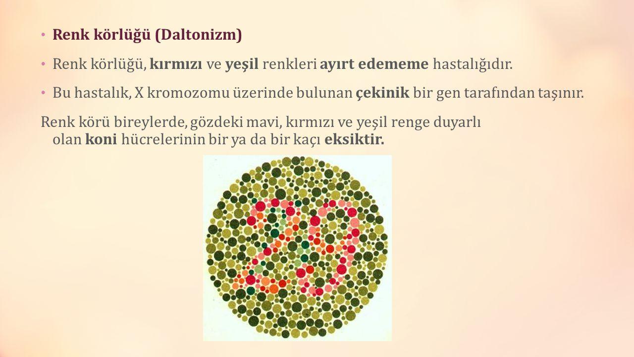 Renk körlüğü (Daltonizm)