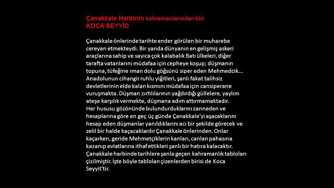 Çanakkale Harbinin kahramanlarından biri KOCA SEYYİD Çanakkale önlerinde tarihte ender görülen bir muharebe cereyan etmekteydi.