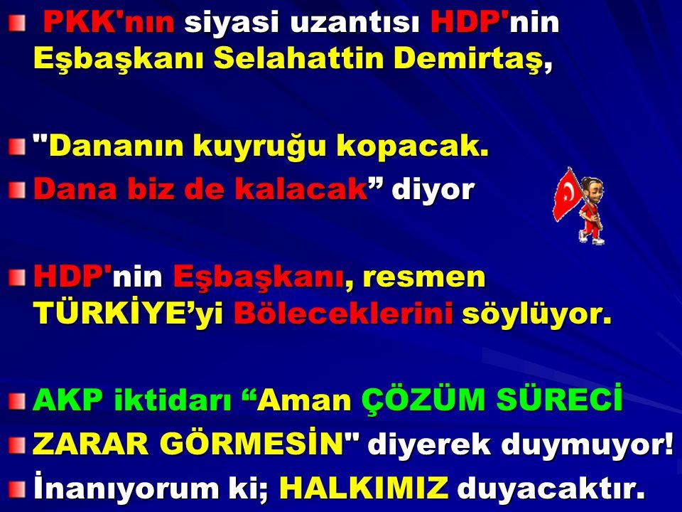 PKK nın siyasi uzantısı HDP nin Eşbaşkanı Selahattin Demirtaş,