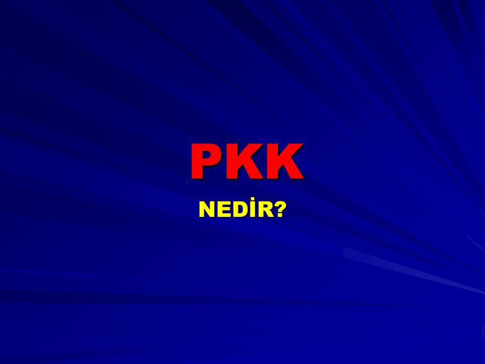 PKK NEDİR