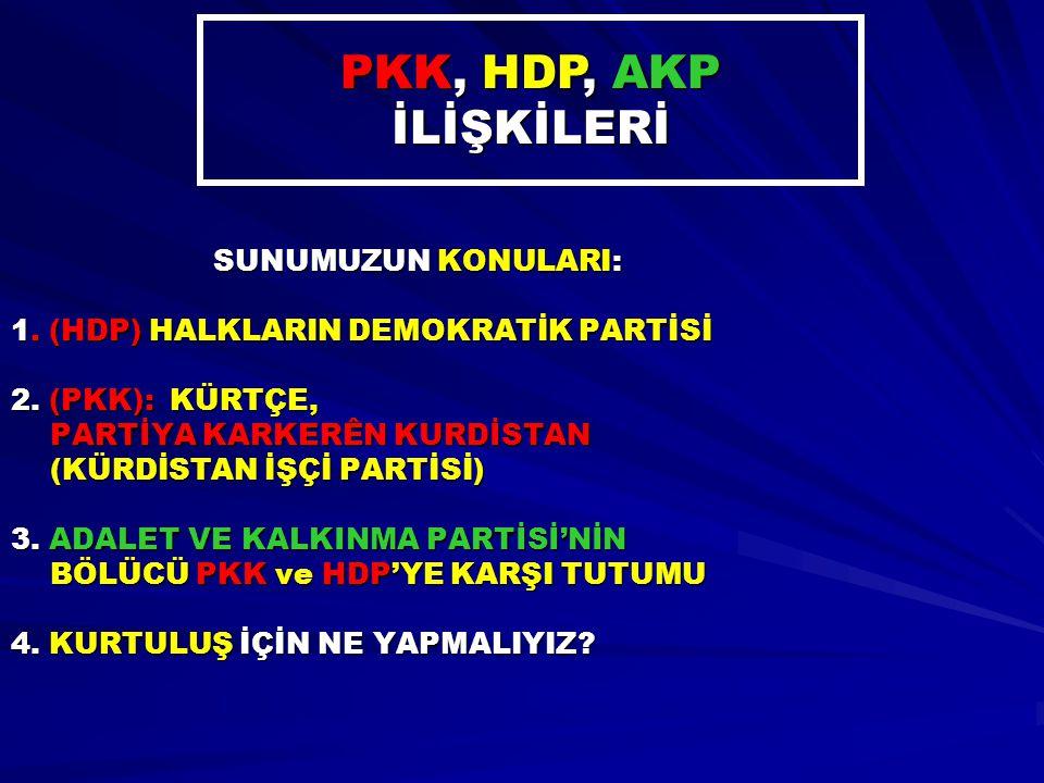 PKK, HDP, AKP İLİŞKİLERİ SUNUMUZUN KONULARI: