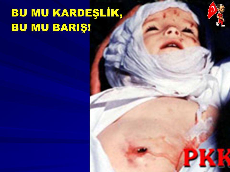 BU MU KARDEŞLİK, BU MU BARIŞ! Derince Köyü Siirt Baykan 23.Ekim 1993