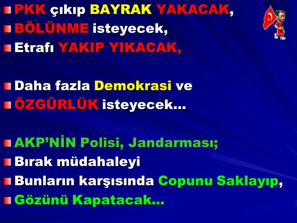 PKK çıkıp BAYRAK YAKACAK,