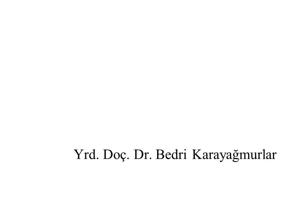 Yrd. Doç. Dr. Bedri Karayağmurlar