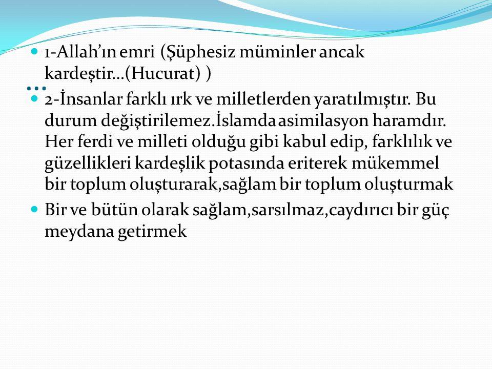 … 1-Allah'ın emri (Şüphesiz müminler ancak kardeştir…(Hucurat) )