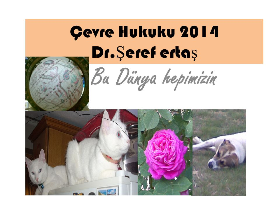 Çevre Hukuku 2014 Dr.Şeref ertaş