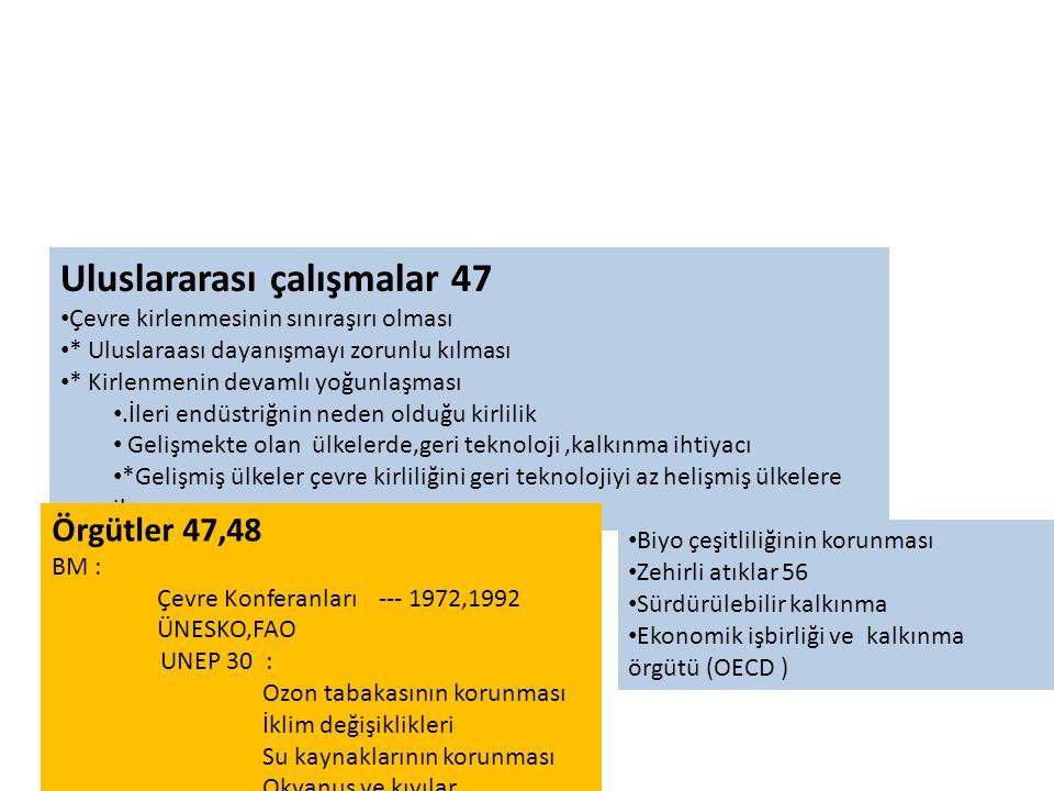 Uluslararası çalışmalar 47