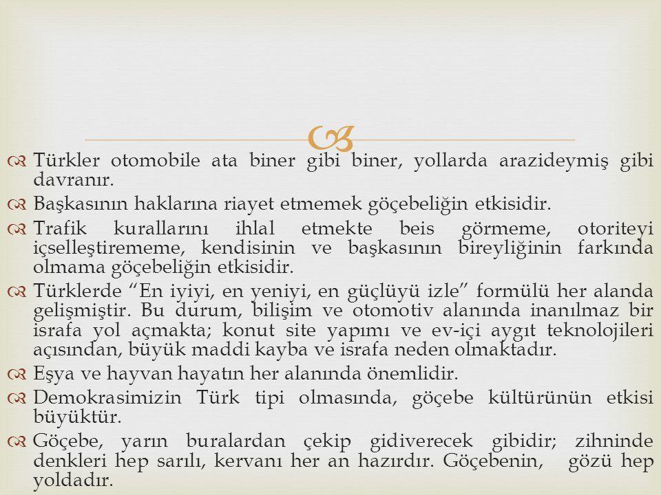 Türkler otomobile ata biner gibi biner, yollarda arazideymiş gibi davranır.
