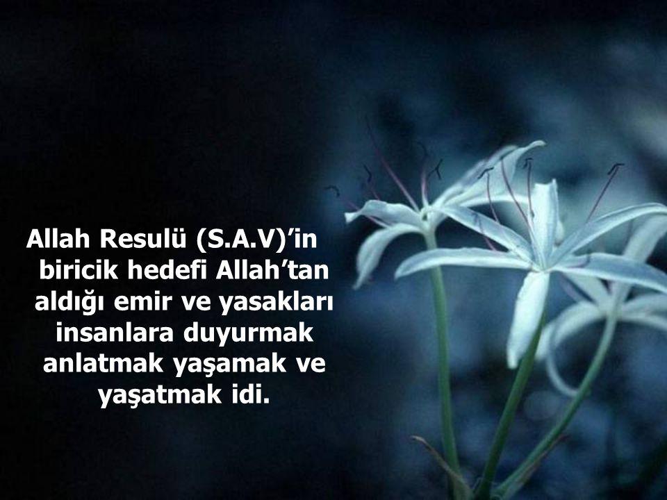 Allah Resulü (S.A.V)'in biricik hedefi Allah'tan aldığı emir ve yasakları insanlara duyurmak anlatmak yaşamak ve yaşatmak idi.