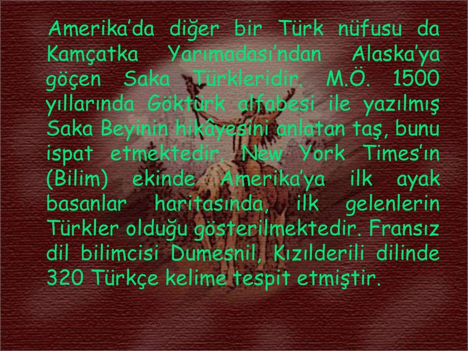 Amerika'da diğer bir Türk nüfusu da Kamçatka Yarımadası'ndan Alaska'ya göçen Saka Türkleridir.