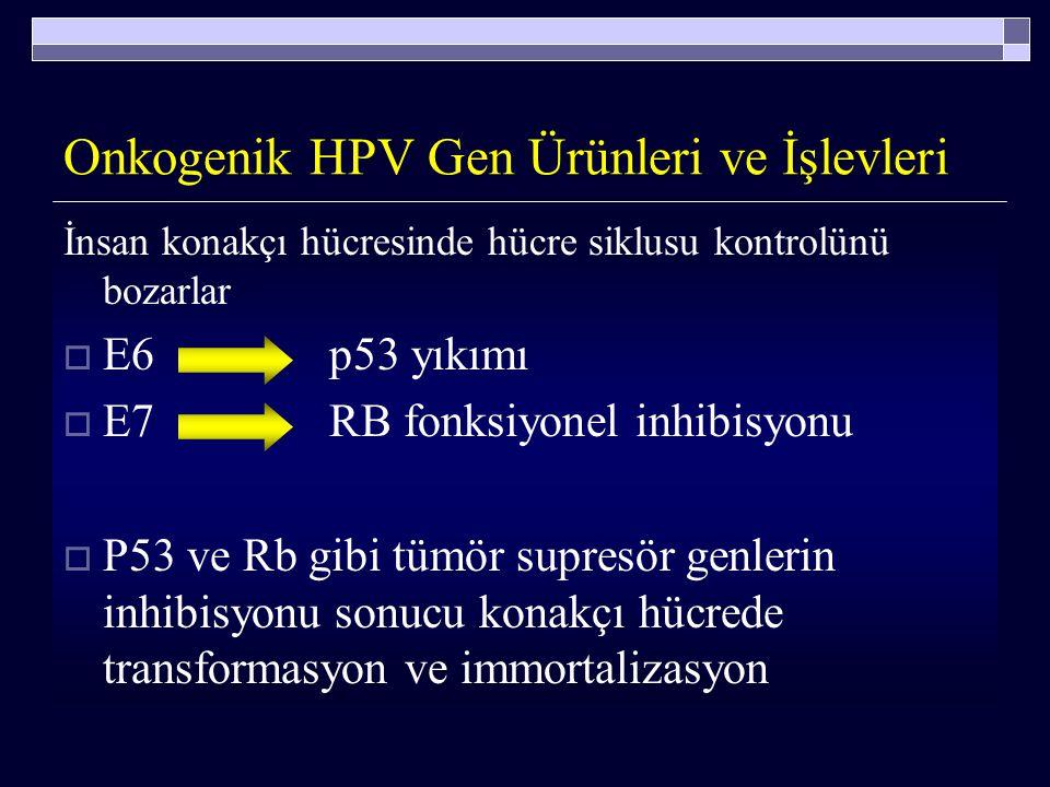 Onkogenik HPV Gen Ürünleri ve İşlevleri